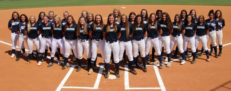 2017 North Paulding High School Softball Teams